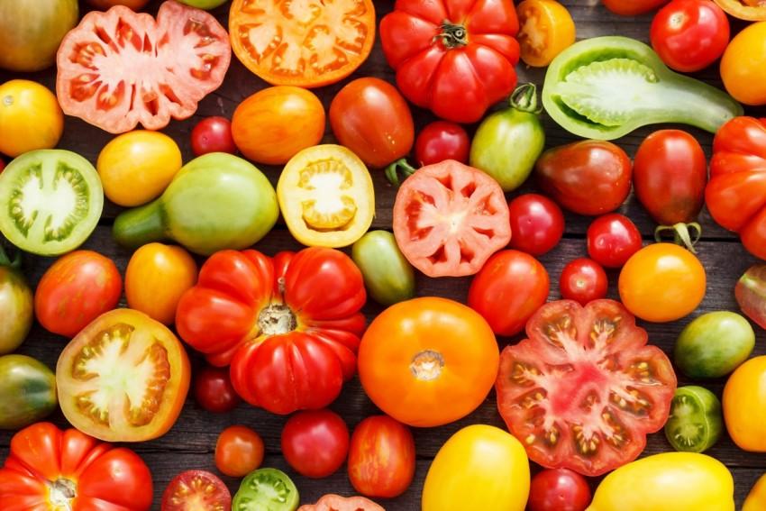 Томат Веселая соседка: отзывы об урожайности помидоров и фото семян, описание и характеристика сорта