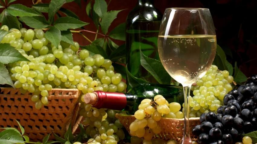 Лучшие сорта винограда для вина