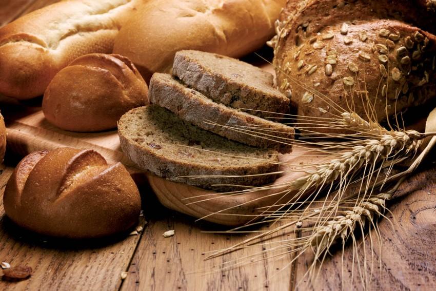 Хлебная подкормка для огурцов и помидоров — лучшие народные и современные средства. Советы по выбору состава и дозировке (80 фото)